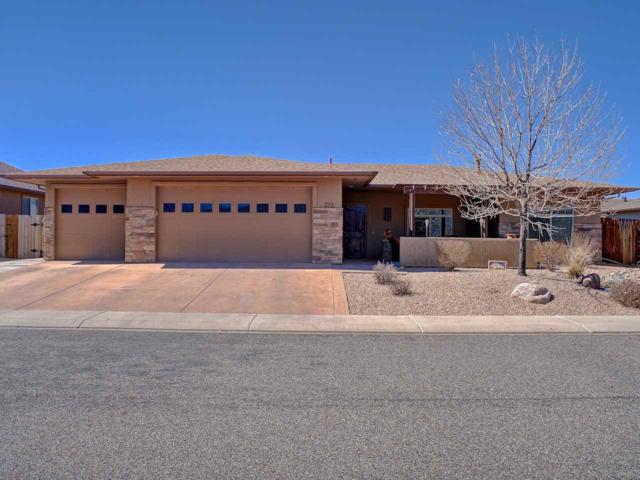 213 Meadow Point Drive, Grand Junction, CO 81503 (MLS #20191297) :: The Christi Reece Group