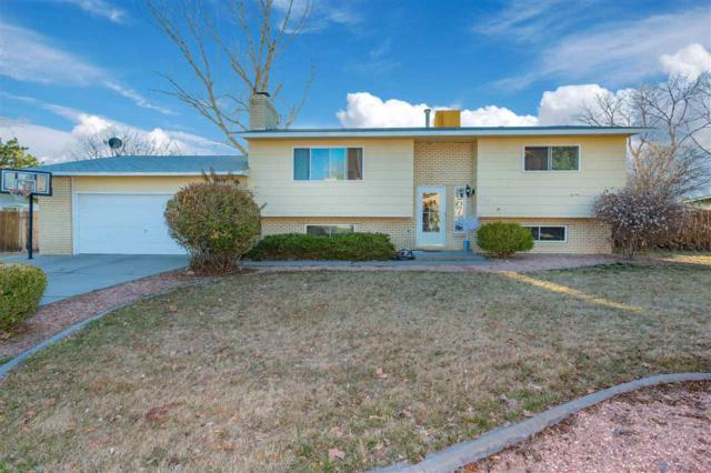 557 Mcmullin Drive, Grand Junction, CO 81504 (MLS #20191358) :: The Christi Reece Group