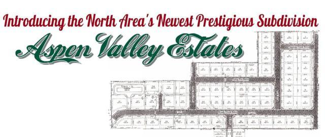 2542 Woody Creek Drive (Lot 30), Grand Junction, CO 81505 (MLS #20191400) :: CENTURY 21 CapRock Real Estate