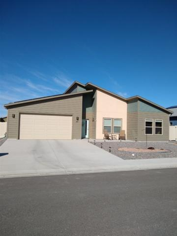 391 White River Drive Platte, Grand Junction, CO 81504 (MLS #20191411) :: The Grand Junction Group