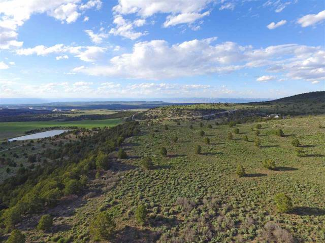 15595 Eagles View Drive, Glade Park, CO 81523 (MLS #20191416) :: The Grand Junction Group with Keller Williams Colorado West LLC