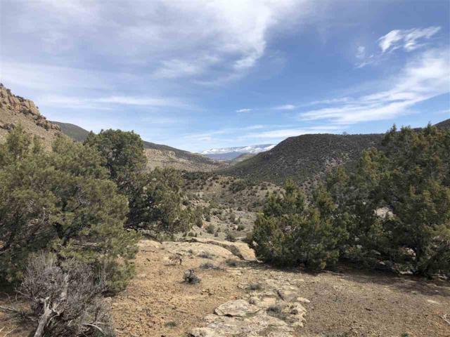 TBD Highway 65, De Beque, CO 81630 (MLS #20191566) :: CapRock Real Estate, LLC