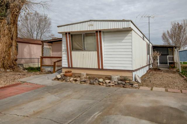 251 Red Cliffs Drive, Fruita, CO 81521 (MLS #20191657) :: The Grand Junction Group with Keller Williams Colorado West LLC