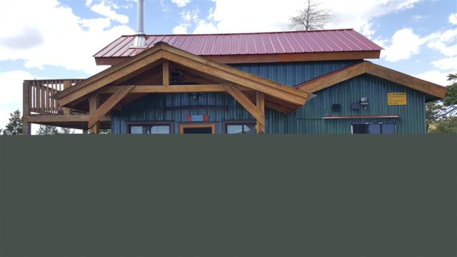288 Bear Ridge Road, New Castle, CO 81647 (MLS #20191776) :: CapRock Real Estate, LLC