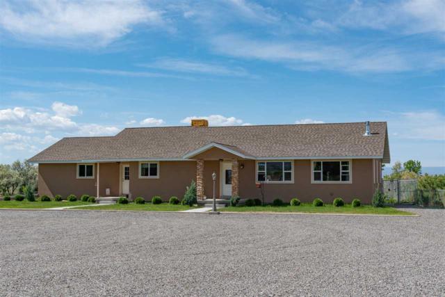 11309 Running Deer Road, Eckert, CO 81418 (MLS #20191869) :: CapRock Real Estate, LLC