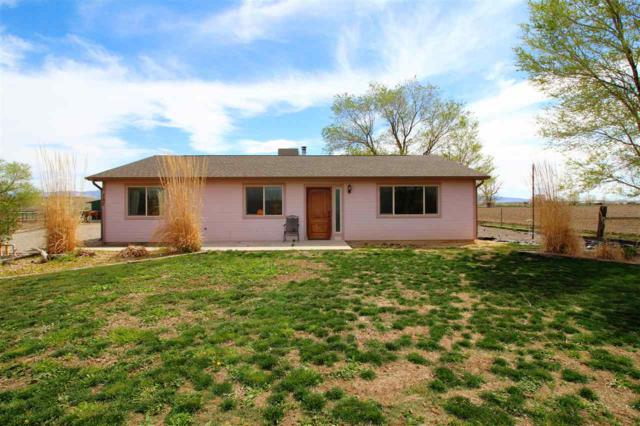 150 Foster Lane, Whitewater, CO 81527 (MLS #20191929) :: The Grand Junction Group with Keller Williams Colorado West LLC