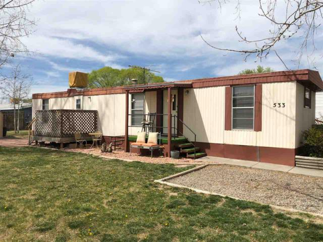 533 Holly Park Drive, Fruita, CO 81521 (MLS #20191942) :: CapRock Real Estate, LLC
