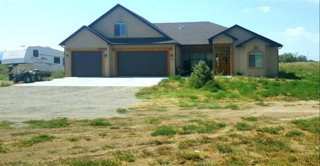 1083 20 Road, Fruita, CO 81521 (MLS #20191953) :: CapRock Real Estate, LLC