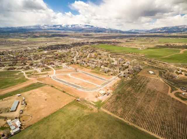 1043 Stoney Ridge Drive, Silt, CO 81650 (MLS #20191974) :: The Christi Reece Group