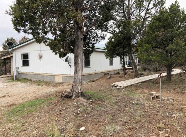 20982 Brimstone Road, Cedaredge, CO 81413 (MLS #20191979) :: The Grand Junction Group with Keller Williams Colorado West LLC