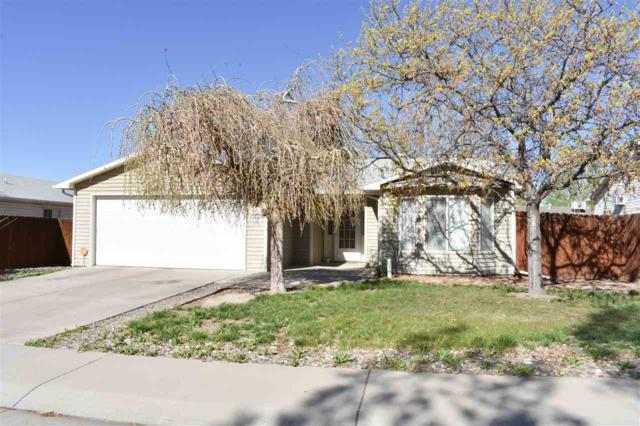 415 E Mallard Way, Grand Junction, CO 81504 (MLS #20192024) :: The Grand Junction Group with Keller Williams Colorado West LLC