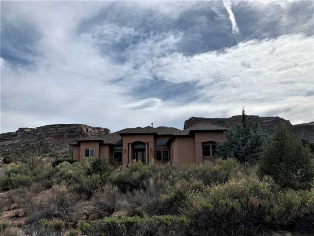 335 Serpents Trail Drive, Grand Junction, CO 81507 (MLS #20192041) :: The Grand Junction Group with Keller Williams Colorado West LLC