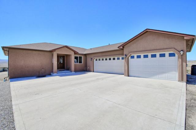 1445 Proctor Court, Whitewater, CO 81527 (MLS #20192049) :: The Grand Junction Group with Keller Williams Colorado West LLC