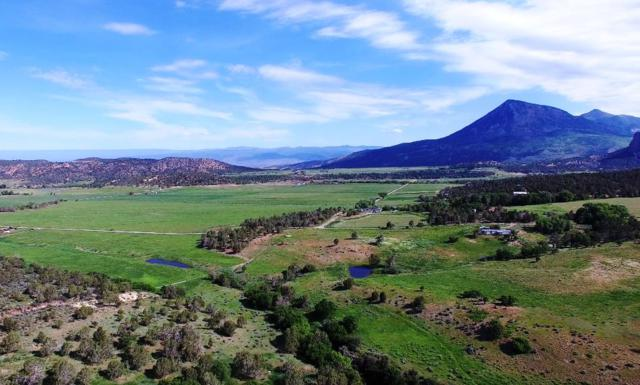 42622 D Road, Crawford, CO 81415 (MLS #20192161) :: The Christi Reece Group