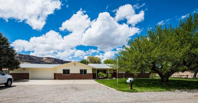 2186 Mckinley Drive, Grand Junction, CO 81507 (MLS #20192333) :: The Grand Junction Group with Keller Williams Colorado West LLC
