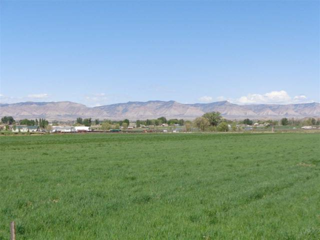 1334 12 Road, Loma, CO 81524 (MLS #20192369) :: The Grand Junction Group with Keller Williams Colorado West LLC
