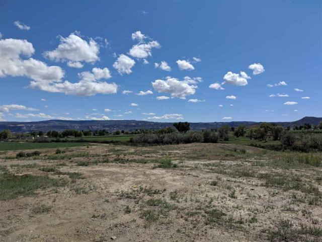 1323 Gold Lake Drive, Loma, CO 81524 (MLS #20192396) :: CENTURY 21 CapRock Real Estate