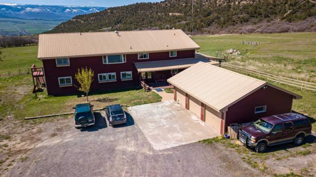 19561 Kimball Creek Road, Collbran, CO 81624 (MLS #20192432) :: The Christi Reece Group