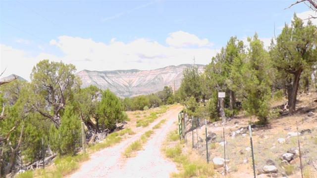 2343 County Road 306, Parachute, CO 81635 (MLS #20192600) :: The Christi Reece Group