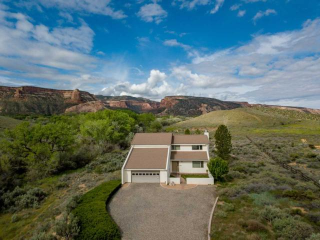 701 Canyon Creek Drive, Grand Junction, CO 81507 (MLS #20192615) :: The Christi Reece Group