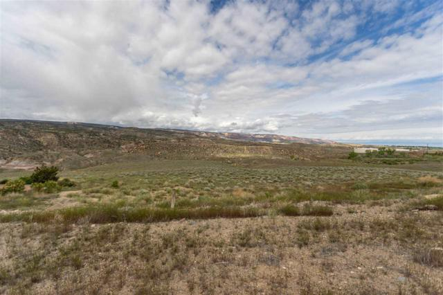 195 River Ridge Drive, Grand Junction, CO 81503 (MLS #20192625) :: The Grand Junction Group with Keller Williams Colorado West LLC