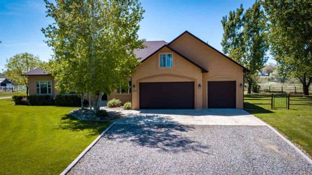 1775 Dell Court, Fruita, CO 81521 (MLS #20192651) :: The Christi Reece Group