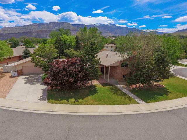 827 Lincoln Court, Palisade, CO 81526 (MLS #20192702) :: The Christi Reece Group