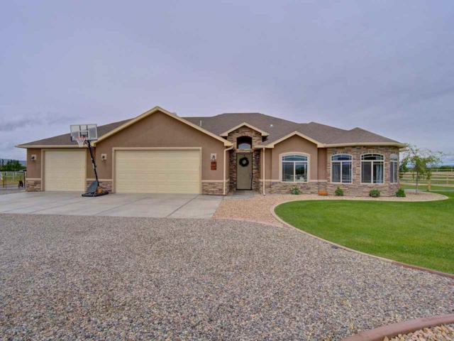 1171 Toscano Road, Fruita, CO 81521 (MLS #20192795) :: The Grand Junction Group with Keller Williams Colorado West LLC