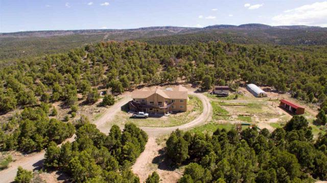 19951 Miller Canyon Ranch Road, Glade Park, CO 81523 (MLS #20192861) :: The Grand Junction Group with Keller Williams Colorado West LLC