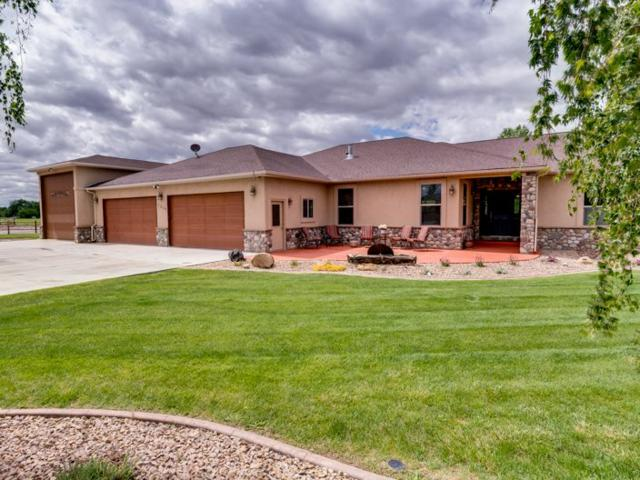 1219 La Mesa Lane, Fruita, CO 81521 (MLS #20192930) :: The Grand Junction Group with Keller Williams Colorado West LLC