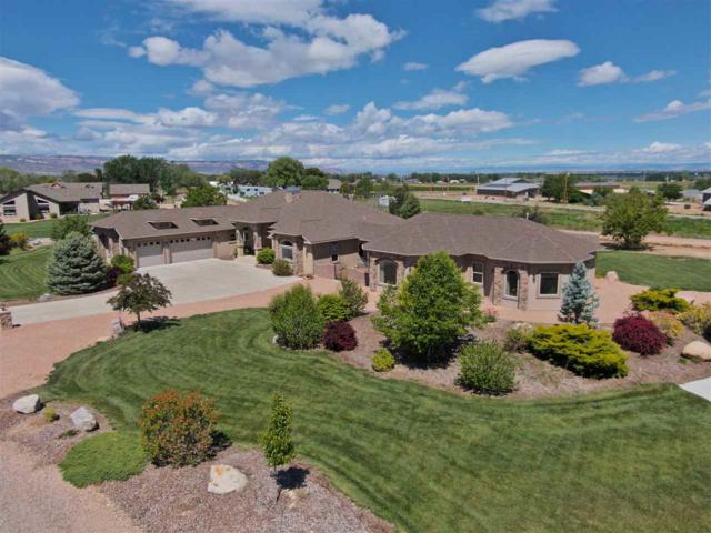 3156 Maddie Court, Grand Junction, CO 81503 (MLS #20192937) :: The Christi Reece Group