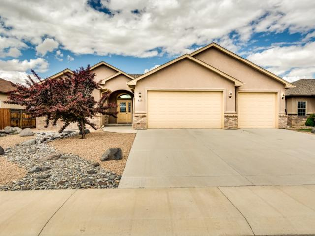 825 Moores Diamond Drive, Fruita, CO 81521 (MLS #20192970) :: The Grand Junction Group with Keller Williams Colorado West LLC