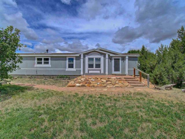 1317 Saddle Ridge Road, Loma, CO 81524 (MLS #20193003) :: The Grand Junction Group with Keller Williams Colorado West LLC