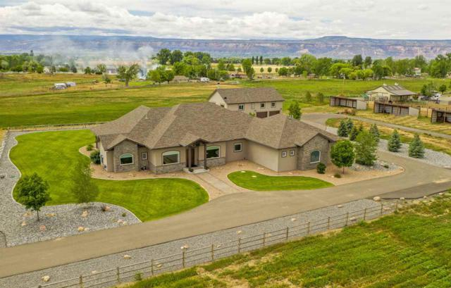 2343 K 1/2 Road, Grand Junction, CO 81505 (MLS #20193009) :: The Grand Junction Group with Keller Williams Colorado West LLC
