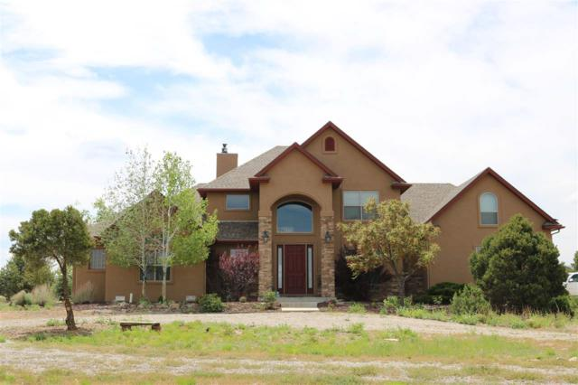 14711 Sage Brush Lane, Glade Park, CO 81523 (MLS #20193098) :: The Grand Junction Group with Keller Williams Colorado West LLC