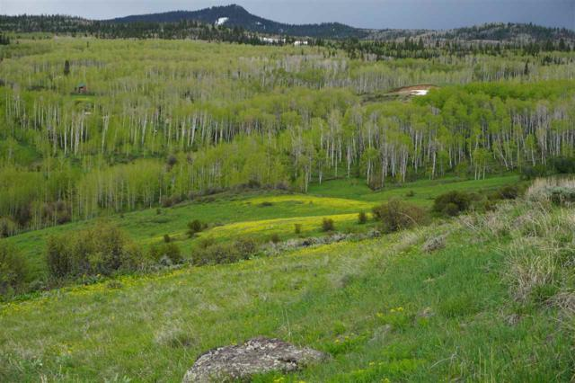 98 Game Reserve Drive, Craig, CO 81625 (MLS #20193131) :: The Grand Junction Group with Keller Williams Colorado West LLC