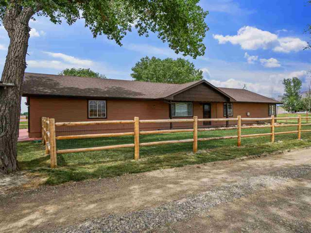 3463 1/2 F 3/4 Road, Clifton, CO 81520 (MLS #20193148) :: The Grand Junction Group with Keller Williams Colorado West LLC