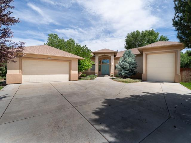 2073 Pannier Court, Grand Junction, CO 81507 (MLS #20193272) :: CapRock Real Estate, LLC