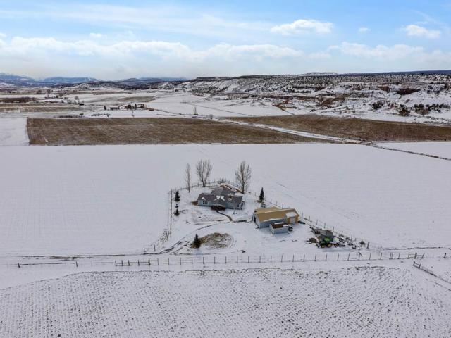 19755 S Highway 550, Montrose, CO 81403 (MLS #20193275) :: The Grand Junction Group with Keller Williams Colorado West LLC