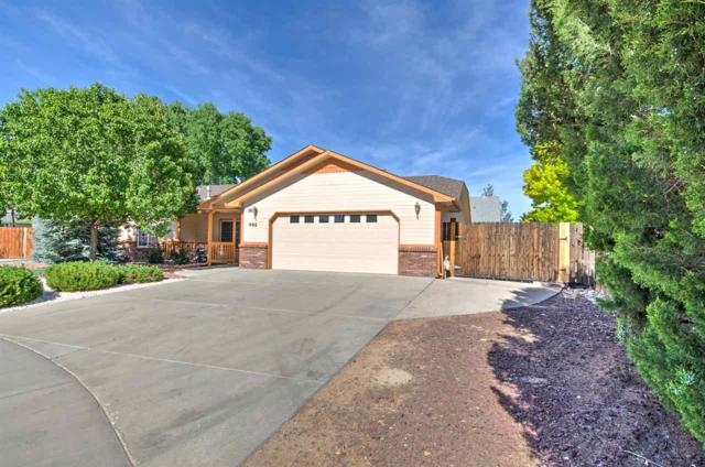 462 Amelia Rose Court, Fruita, CO 81521 (MLS #20193315) :: The Grand Junction Group with Keller Williams Colorado West LLC
