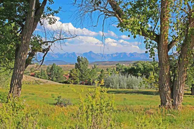 66527 Ogden Road, Montrose, CO 81403 (MLS #20193434) :: The Grand Junction Group with Keller Williams Colorado West LLC