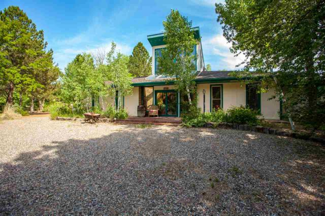346 S Redlands Road, Grand Junction, CO 81507 (MLS #20193475) :: The Grand Junction Group with Keller Williams Colorado West LLC