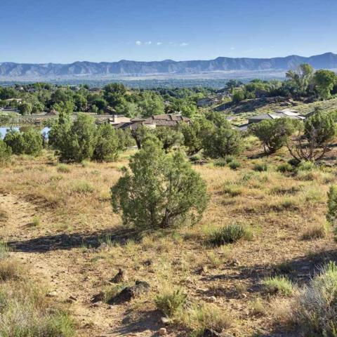 333 Redlands Mesa Drive, Grand Junction, CO 81507 (MLS #20193501) :: The Grand Junction Group with Keller Williams Colorado West LLC