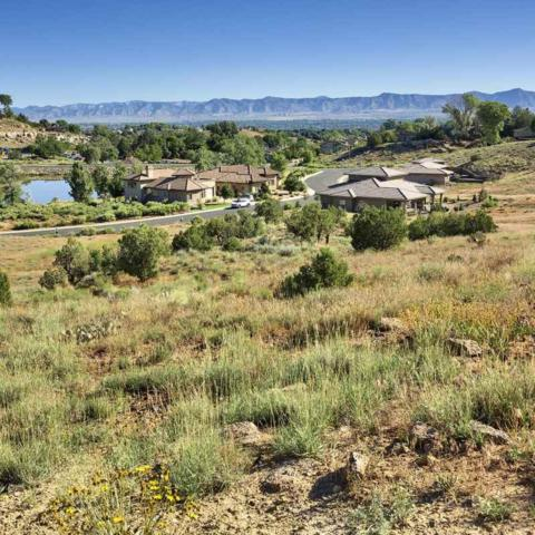 335 Redlands Mesa Drive, Grand Junction, CO 81507 (MLS #20193502) :: The Grand Junction Group with Keller Williams Colorado West LLC