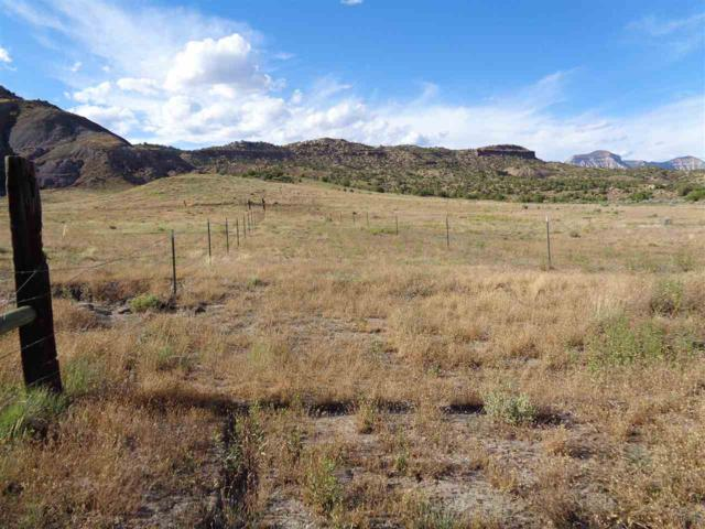 4298 V 2/10 Road, De Beque, CO 81630 (MLS #20193526) :: The Grand Junction Group with Keller Williams Colorado West LLC