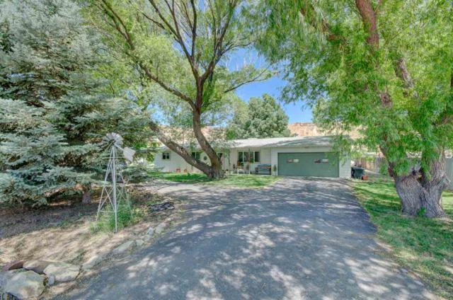3648 G Road, Palisade, CO 81526 (MLS #20193836) :: The Christi Reece Group