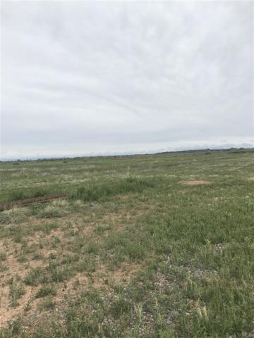 808 Purdy Mesa Road, Whitewater, CO 81527 (MLS #20193862) :: The Christi Reece Group