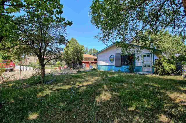 707 E Harrison Avenue, Fruita, CO 81521 (MLS #20193908) :: The Christi Reece Group