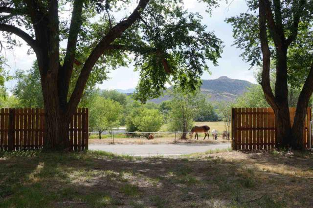 TBD Beaman Avenue, De Beque, CO 81630 (MLS #20193910) :: CapRock Real Estate, LLC