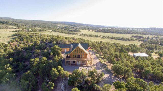 18342 Miller Canyon Ranch Road, Glade Park, CO 81523 (MLS #20193977) :: The Christi Reece Group